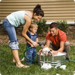 Parenting improves biological age